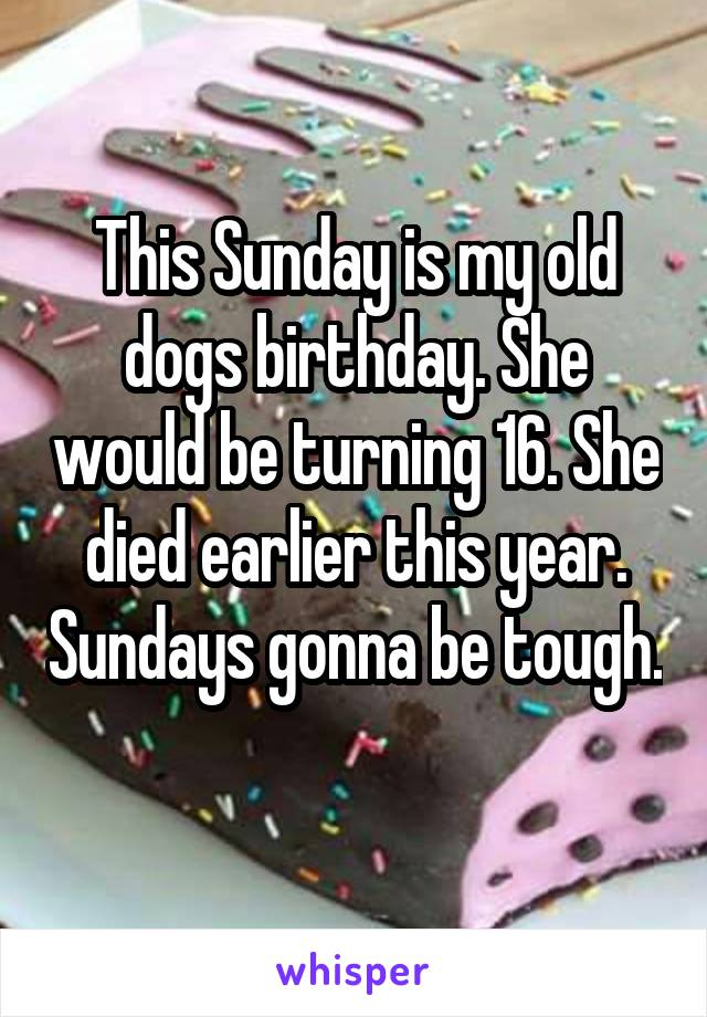 This Sunday is my old dogs birthday. She would be turning 16. She died earlier this year. Sundays gonna be tough.