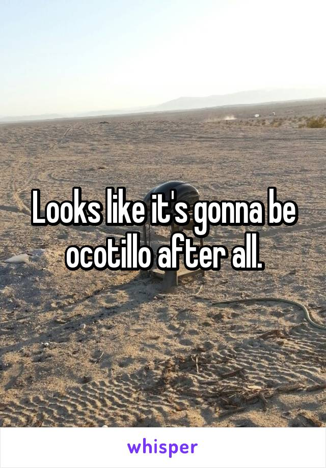 Looks like it's gonna be ocotillo after all.