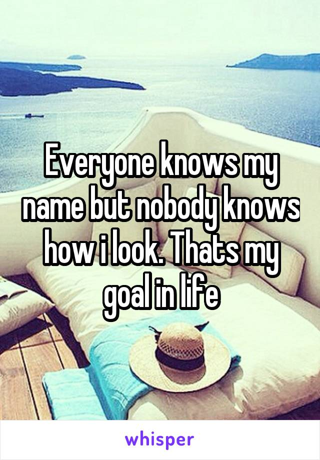 Everyone knows my name but nobody knows how i look. Thats my goal in life