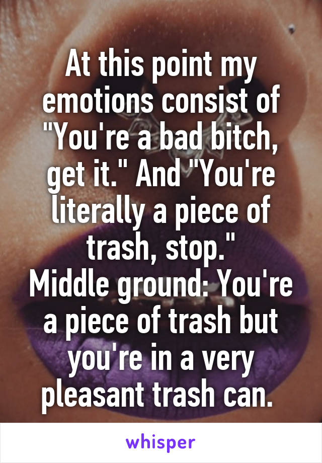 """At this point my emotions consist of """"You're a bad bitch, get it."""" And """"You're literally a piece of trash, stop."""" Middle ground: You're a piece of trash but you're in a very pleasant trash can."""