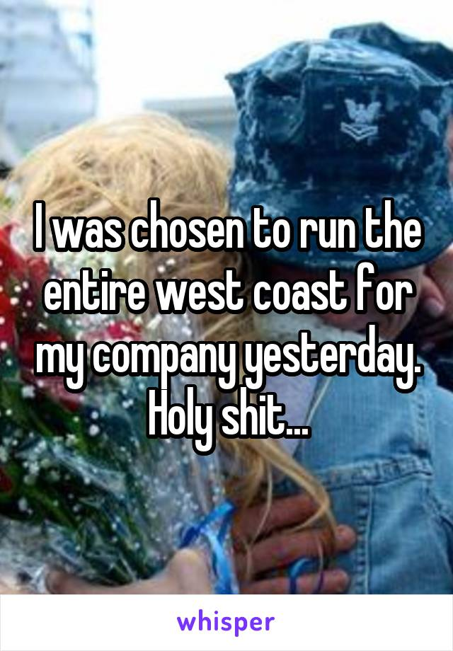 I was chosen to run the entire west coast for my company yesterday. Holy shit...
