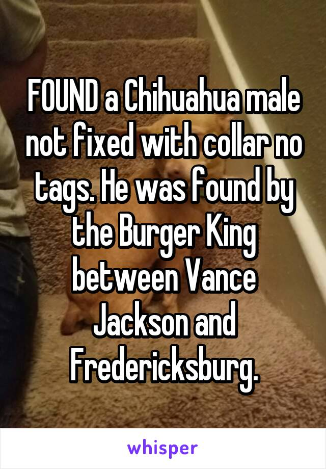 FOUND a Chihuahua male not fixed with collar no tags. He was found by the Burger King between Vance Jackson and Fredericksburg.