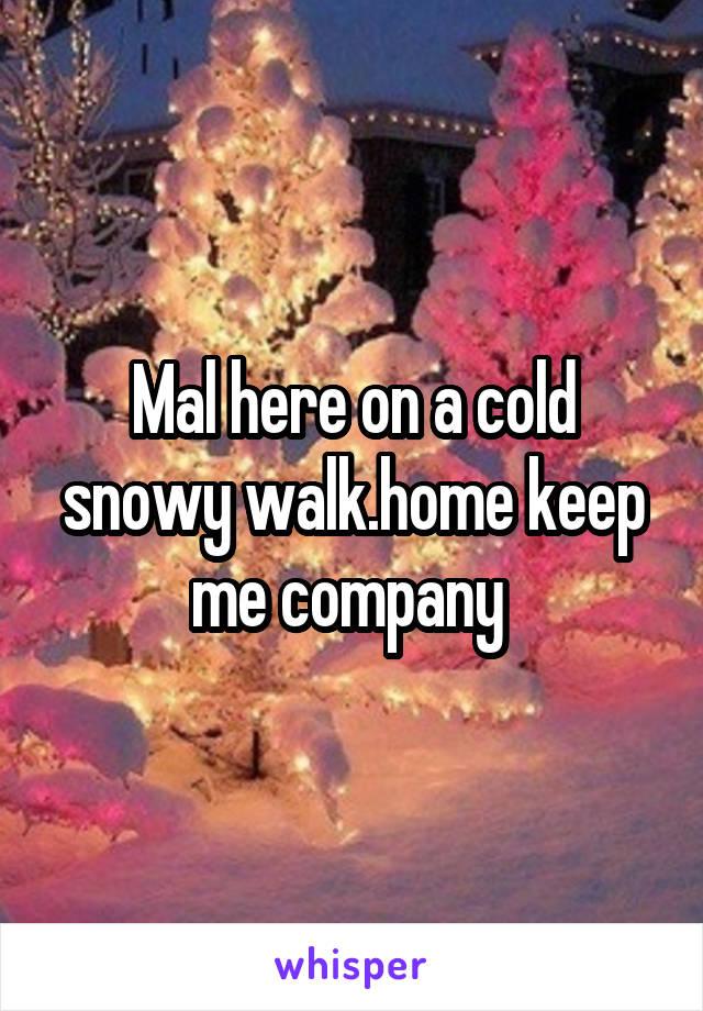 Mal here on a cold snowy walk.home keep me company