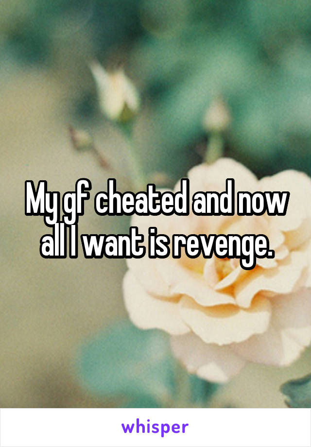 My gf cheated and now all I want is revenge.