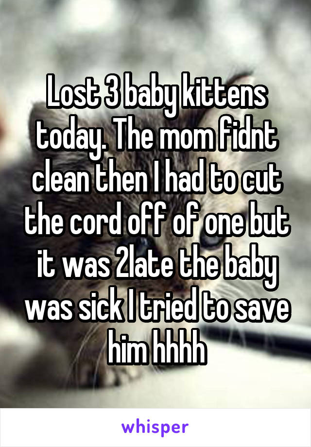 Lost 3 baby kittens today. The mom fidnt clean then I had to cut the cord off of one but it was 2late the baby was sick I tried to save him hhhh