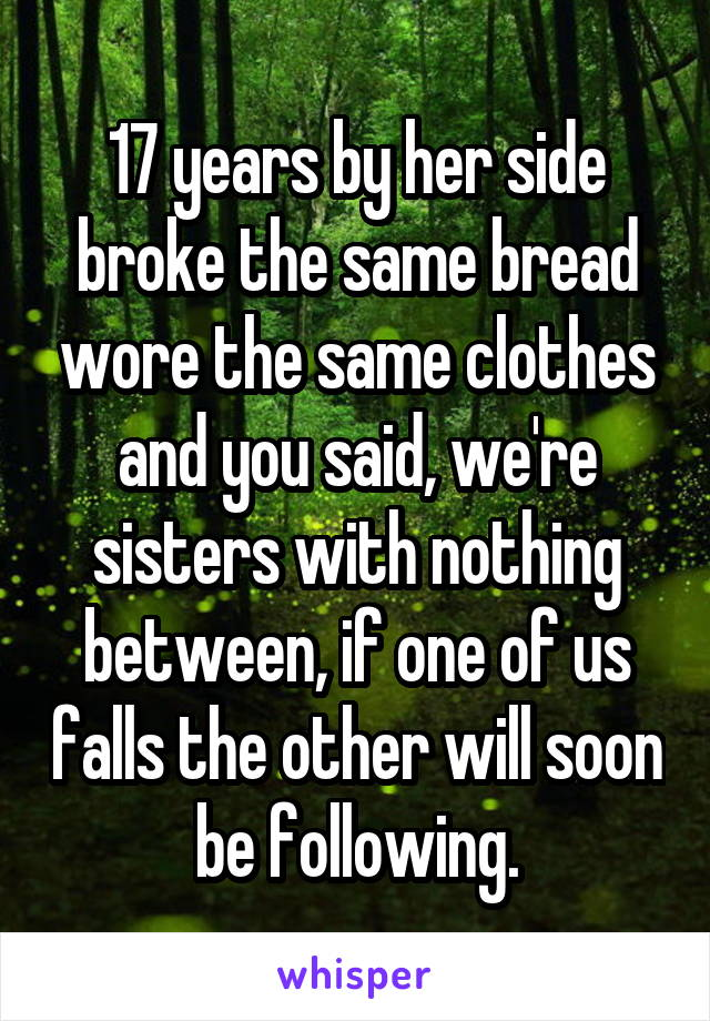 17 years by her side broke the same bread wore the same clothes and you said, we're sisters with nothing between, if one of us falls the other will soon be following.
