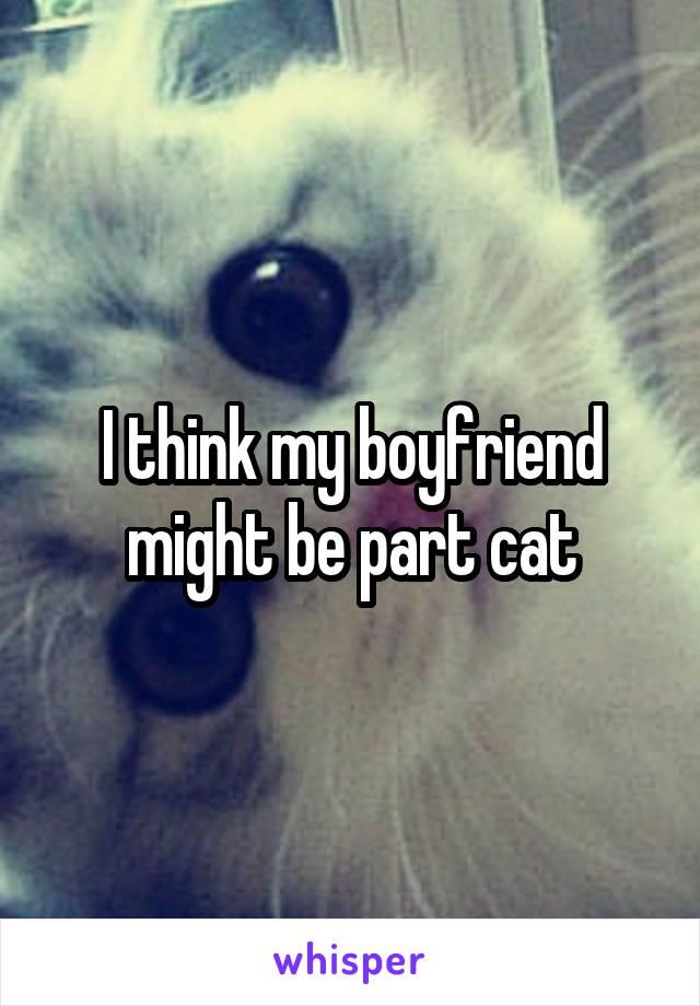I think my boyfriend might be part cat