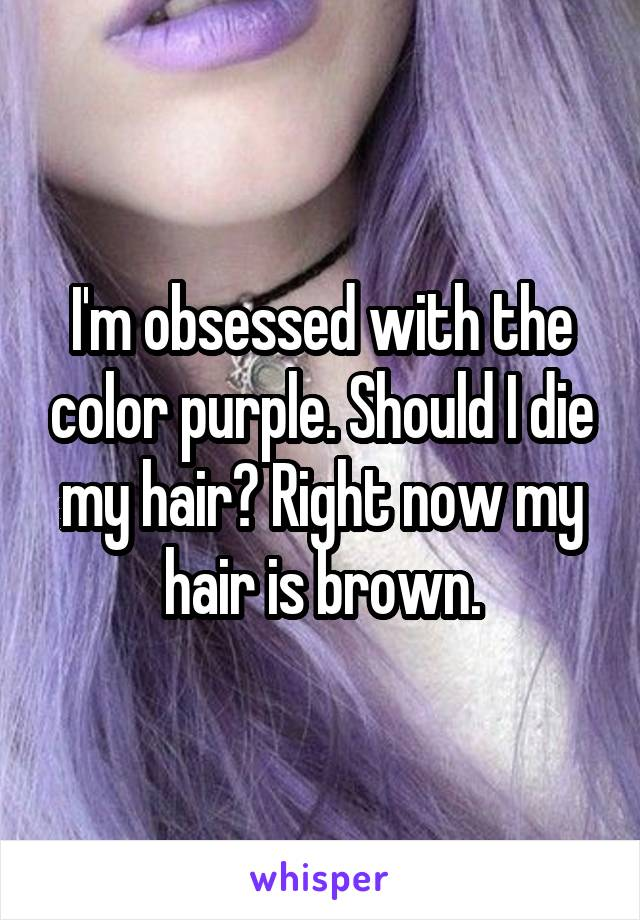 I'm obsessed with the color purple. Should I die my hair? Right now my hair is brown.