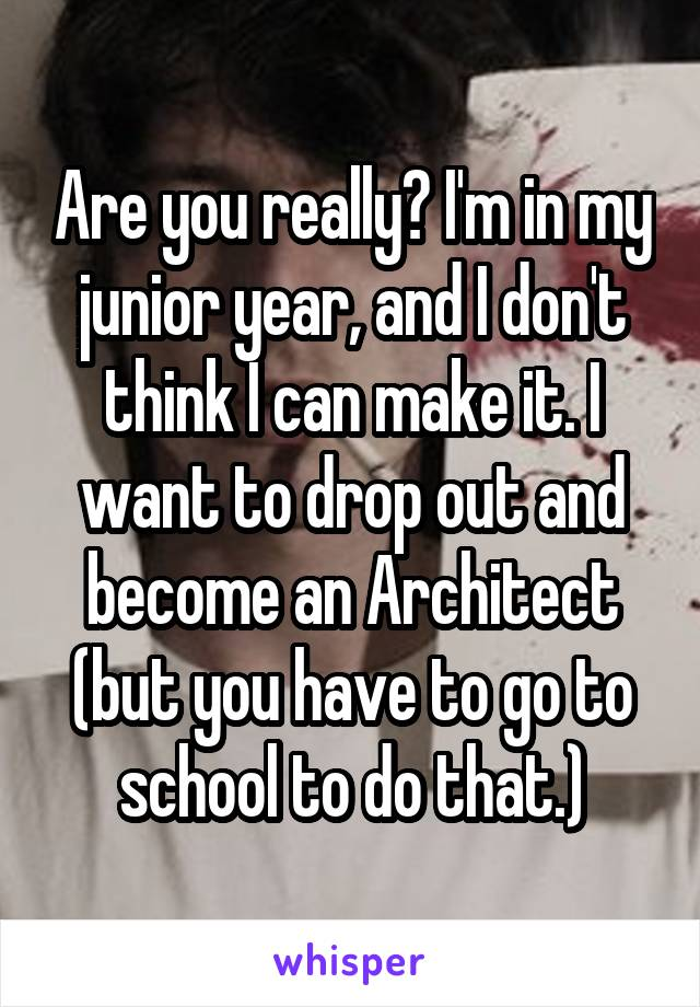 Should I Become An Architect i'm dropping out of school and becoming a  stripper