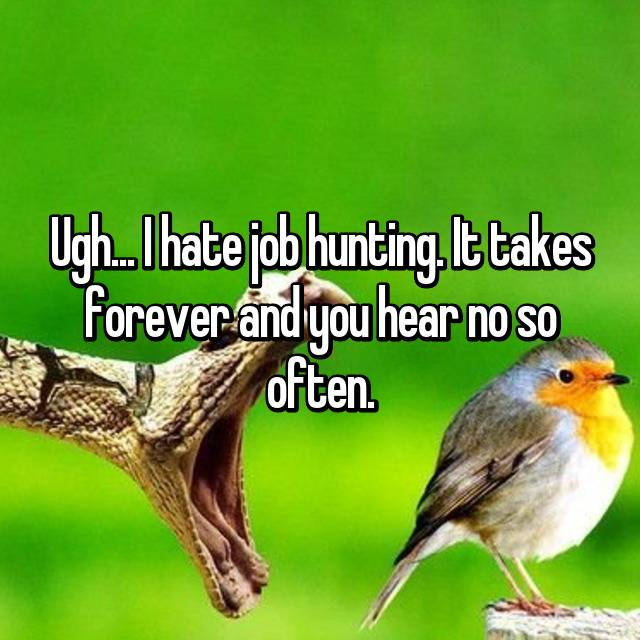 Ugh... I hate job hunting. It takes forever and you hear no so often.