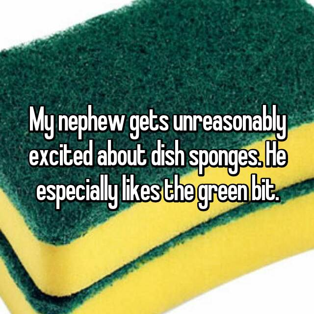 My nephew gets unreasonably excited about dish sponges. He especially likes the green bit.