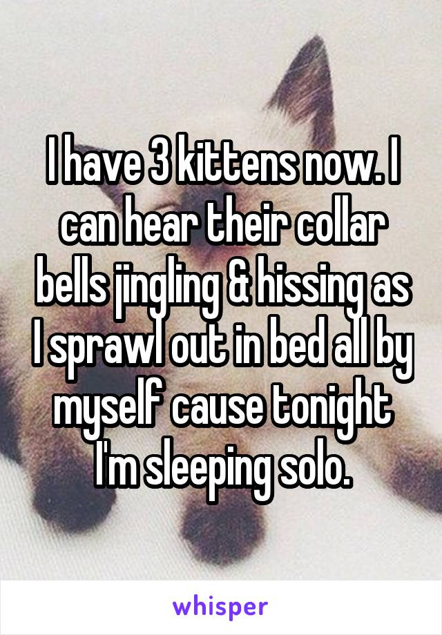 I have 3 kittens now. I can hear their collar bells jingling & hissing as I sprawl out in bed all by myself cause tonight I'm sleeping solo.