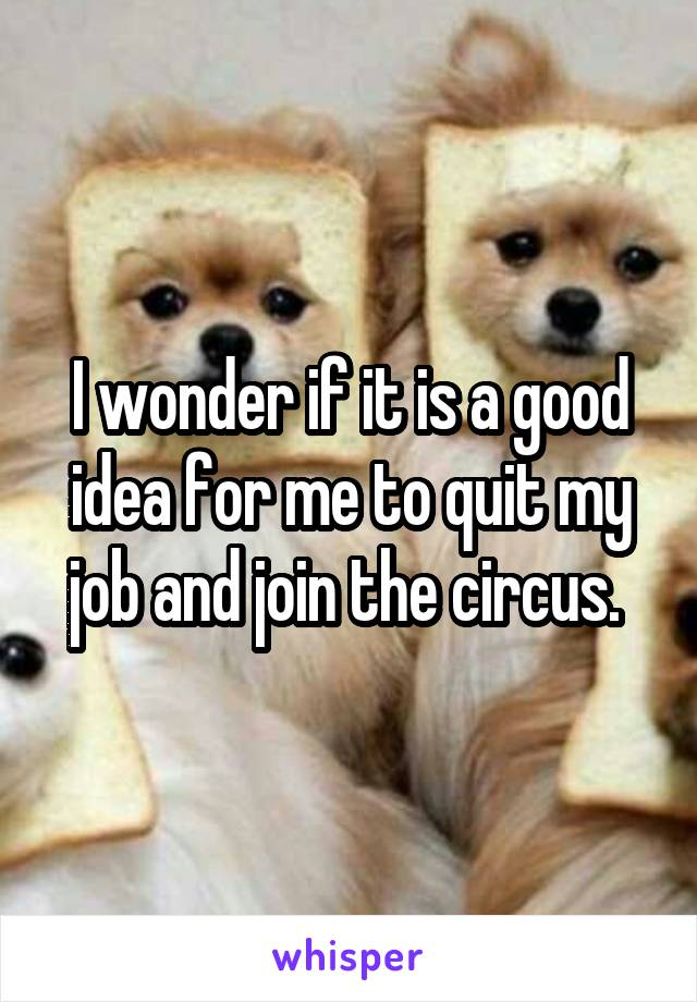 I wonder if it is a good idea for me to quit my job and join the circus.