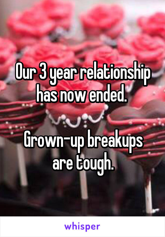 Our 3 year relationship has now ended.   Grown-up breakups are tough.
