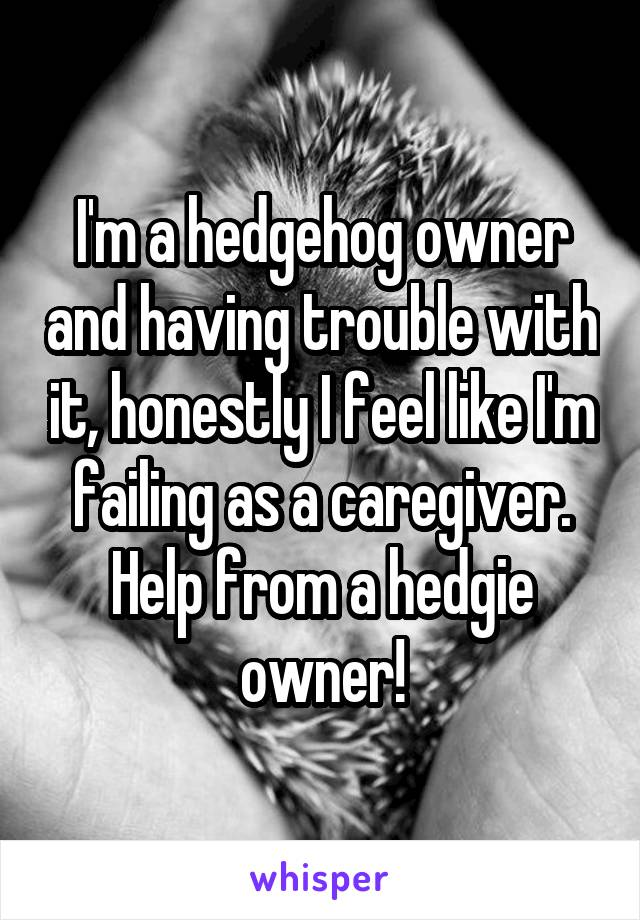 I'm a hedgehog owner and having trouble with it, honestly I feel like I'm failing as a caregiver. Help from a hedgie owner!