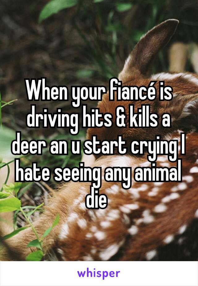 When your fiancé is driving hits & kills a deer an u start crying I hate seeing any animal die