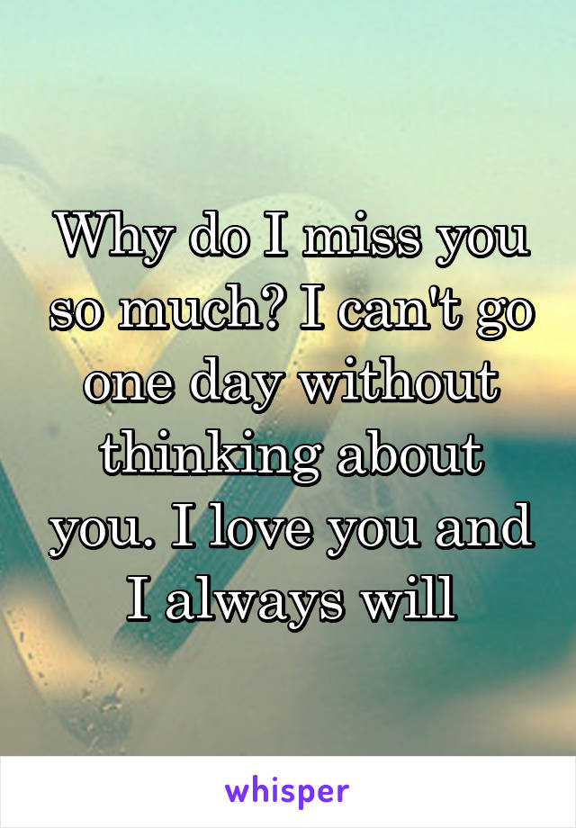 Why do I miss you so much? I can't go one day without thinking about you. I love you and I always will