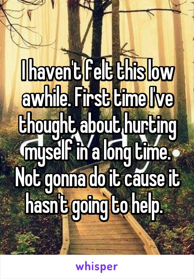 I haven't felt this low awhile. First time I've thought about hurting myself in a long time. Not gonna do it cause it hasn't going to help.