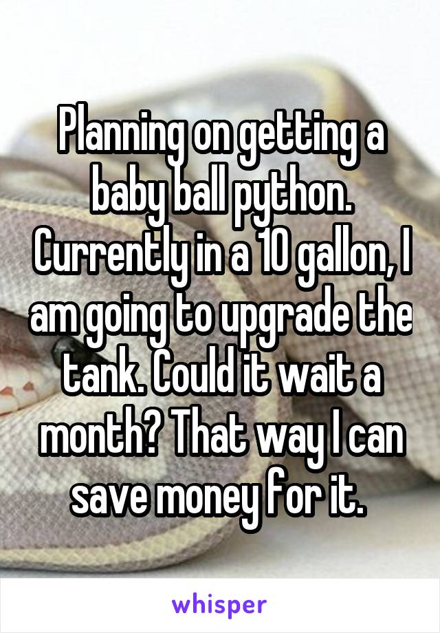 Planning on getting a baby ball python. Currently in a 10 gallon, I am going to upgrade the tank. Could it wait a month? That way I can save money for it.