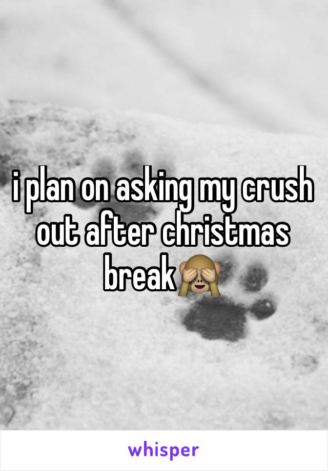 i plan on asking my crush out after christmas break🙈