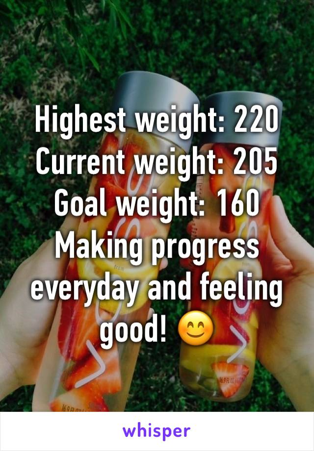 Highest weight: 220 Current weight: 205 Goal weight: 160 Making progress everyday and feeling good! 😊
