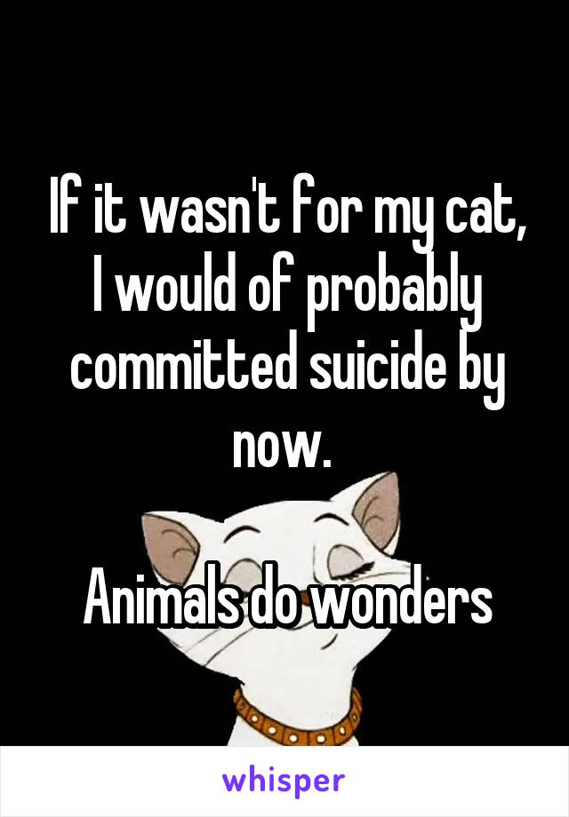 If it wasn't for my cat, I would of probably committed suicide by now.   Animals do wonders