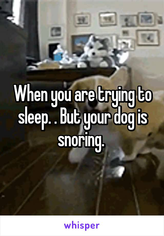 When you are trying to sleep. . But your dog is snoring.