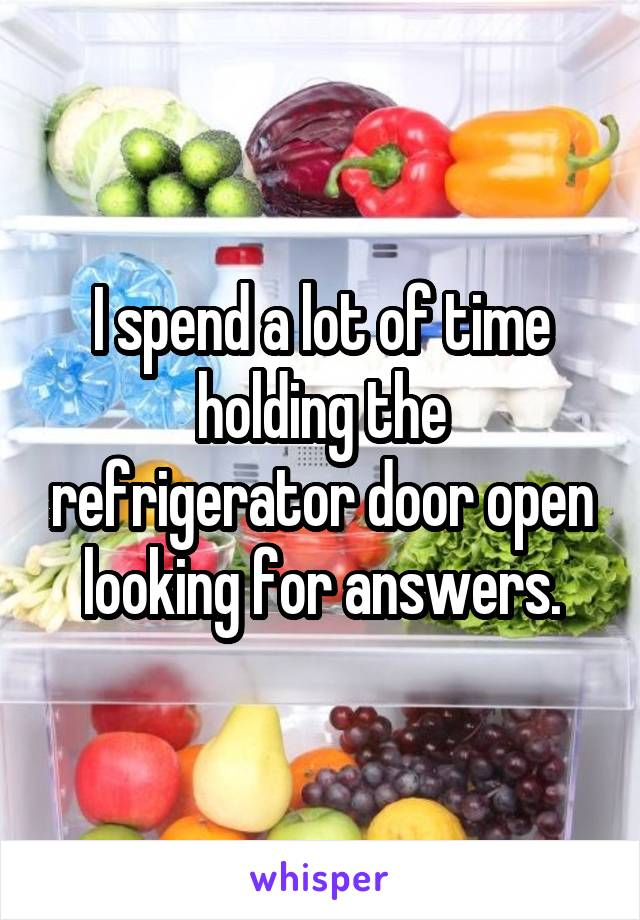 I spend a lot of time holding the refrigerator door open looking for answers.