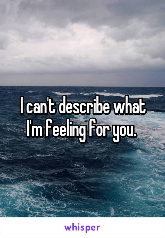 I can't describe what I'm feeling for you.