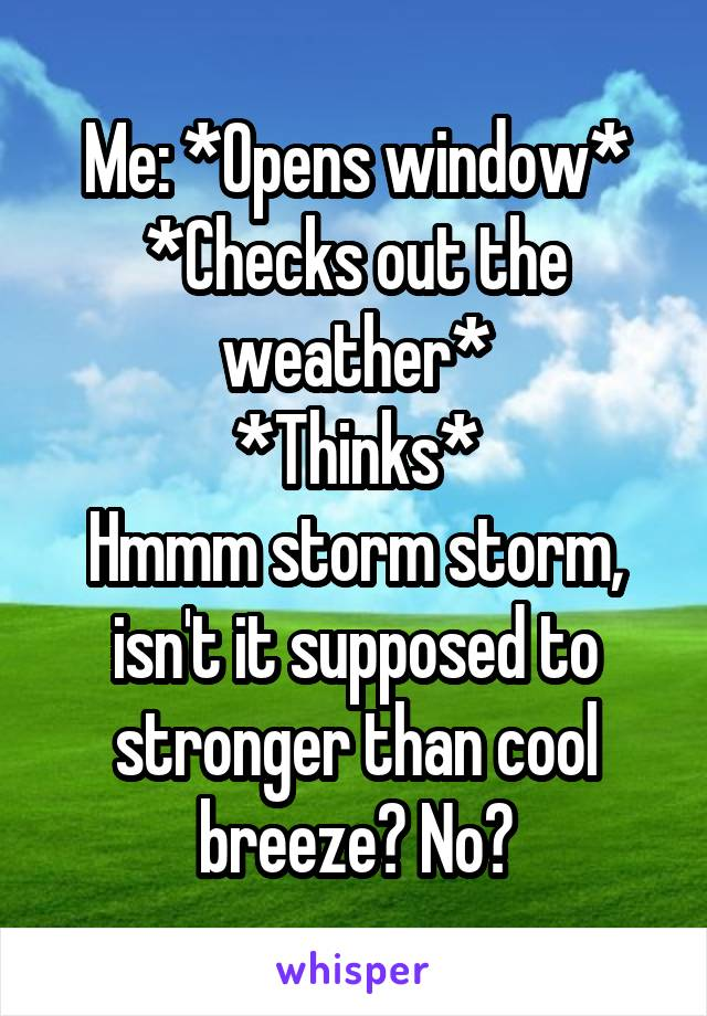 Me: *Opens window* *Checks out the weather* *Thinks* Hmmm storm storm, isn't it supposed to stronger than cool breeze? No?