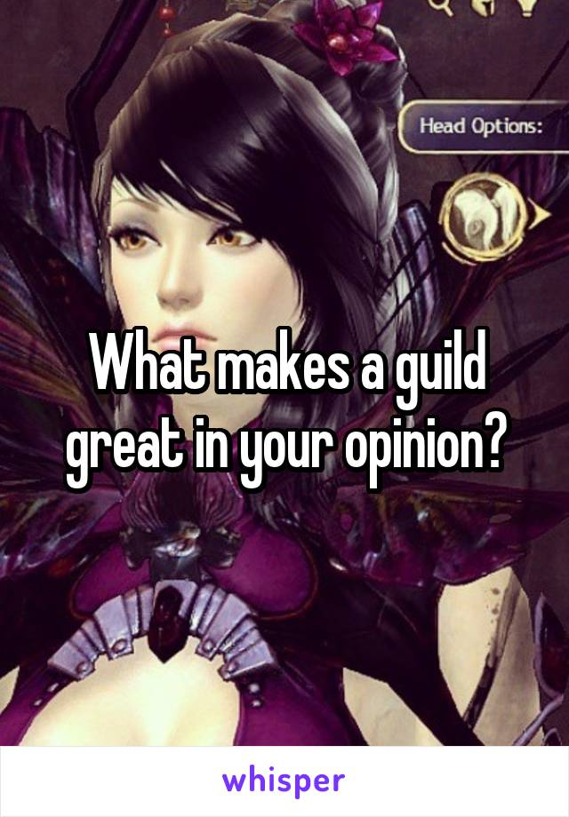 What makes a guild great in your opinion?