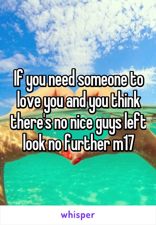 If you need someone to love you and you think there's no nice guys left look no further m17