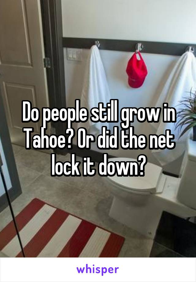 Do people still grow in Tahoe? Or did the net lock it down?