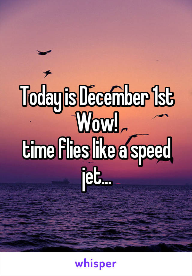 Today is December 1st Wow! time flies like a speed jet...