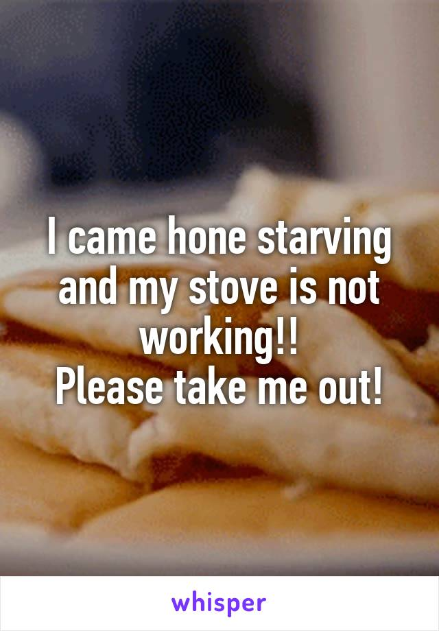I came hone starving and my stove is not working!! Please take me out!
