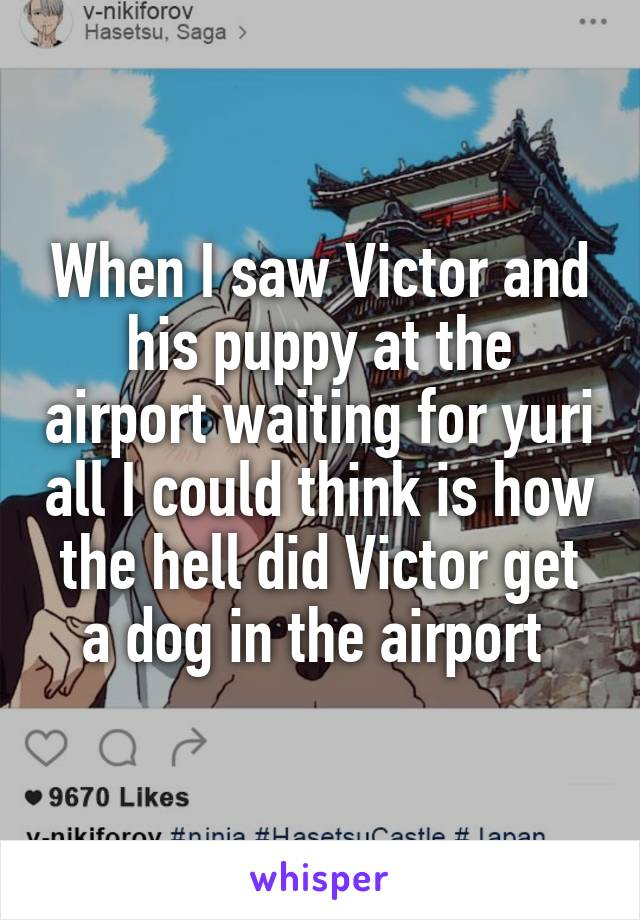 When I saw Victor and his puppy at the airport waiting for yuri all I could think is how the hell did Victor get a dog in the airport