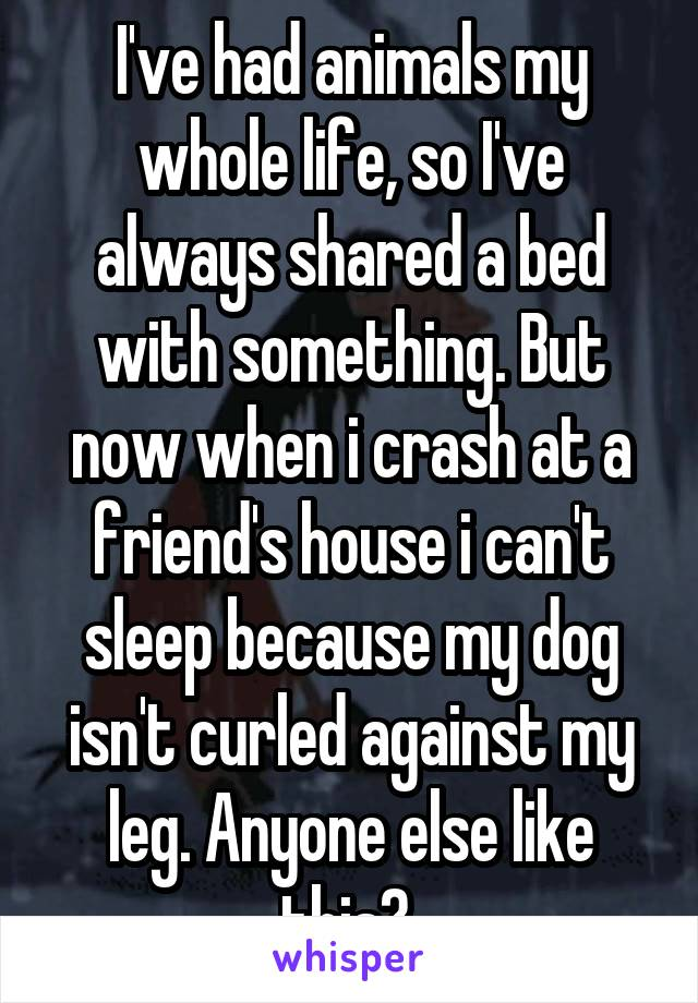 I've had animals my whole life, so I've always shared a bed with something. But now when i crash at a friend's house i can't sleep because my dog isn't curled against my leg. Anyone else like this?