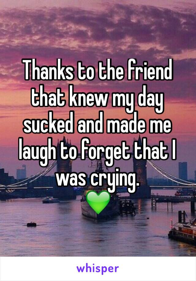Thanks to the friend that knew my day sucked and made me laugh to forget that I was crying.  💚