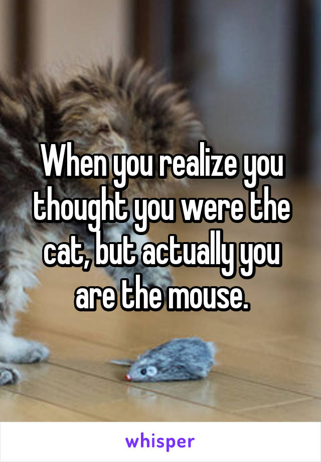 When you realize you thought you were the cat, but actually you are the mouse.