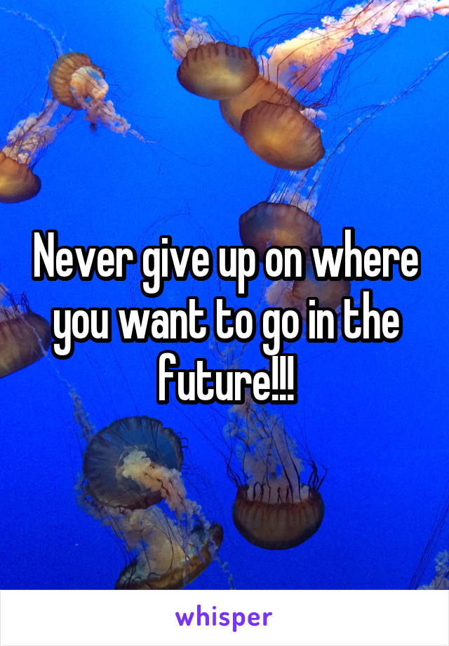 Never give up on where you want to go in the future!!!