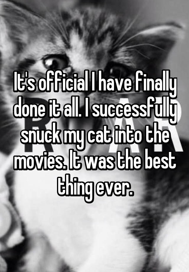 It's official I have finally done it all. I successfully snuck my cat into the movies. It was the best thing ever.