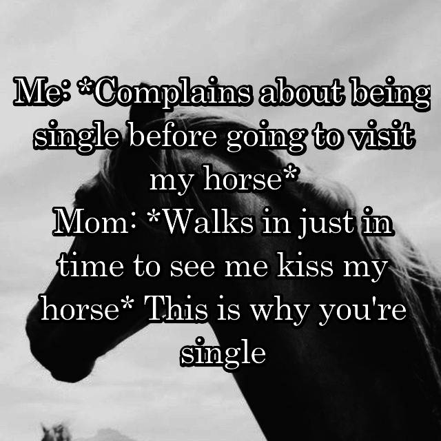 Me: *Complains about being single before going to visit my horse* Mom: *Walks in just in time to see me kiss my horse* This is why you're single