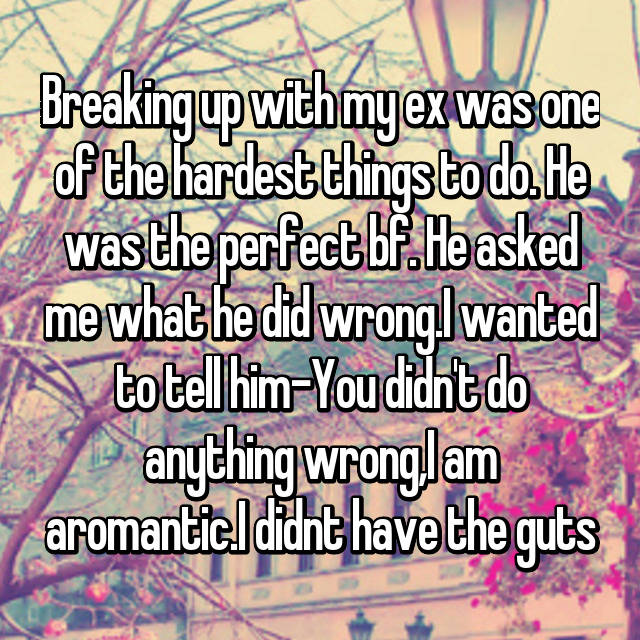 Breaking up with my ex was one of the hardest things to do. He was the perfect bf. He asked me what he did wrong.I wanted to tell him-You didn't do anything wrong,I am aromantic.I didnt have the guts