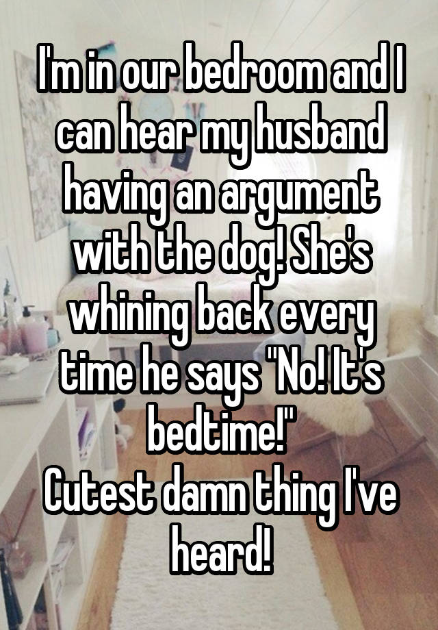 """I'm in our bedroom and I can hear my husband having an argument with the dog! She's whining back every time he says """"No! It's bedtime!"""" Cutest damn thing I've heard!"""