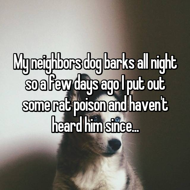 My neighbors dog barks all night so a few days ago I put out some rat poison and haven't heard him since...