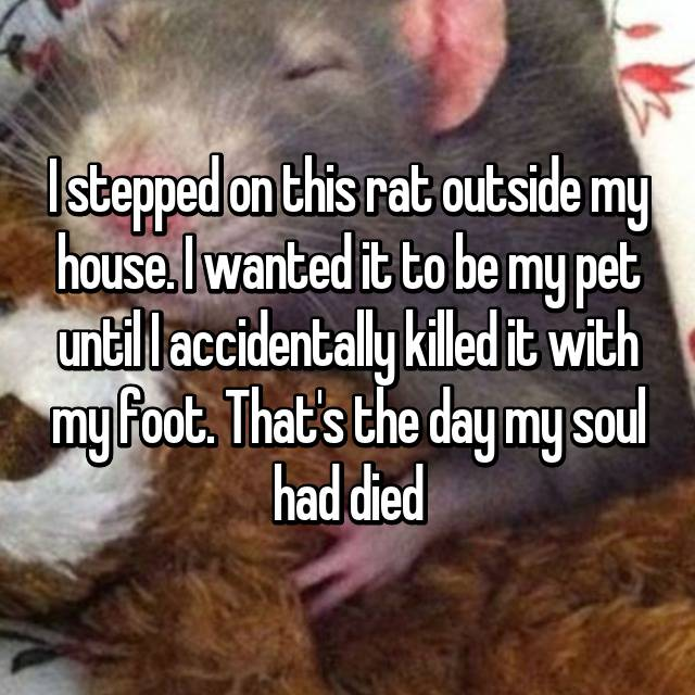 I stepped on this rat outside my house. I wanted it to be my pet until I accidentally killed it with my foot. That's the day my soul had died