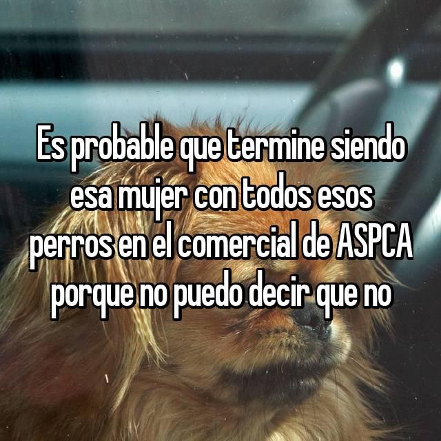 Es probable que termine siendo esa mujer con todos esos perros en el comercial de ASPCA porque no puedo decir que no