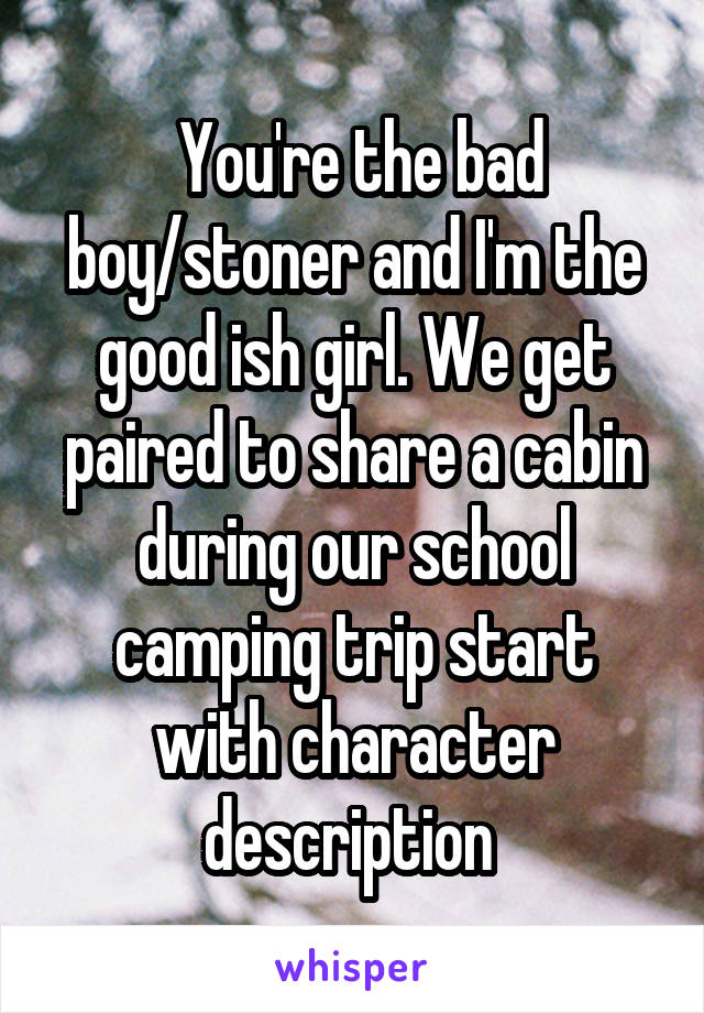 You're the bad boy/stoner and I'm the good ish girl. We get paired to share a cabin during our school camping trip start with character description