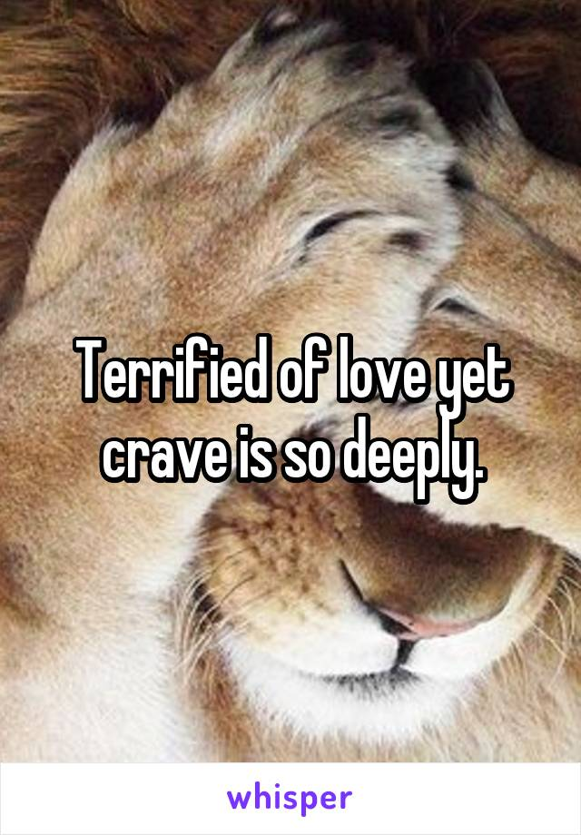 Terrified of love yet crave is so deeply.