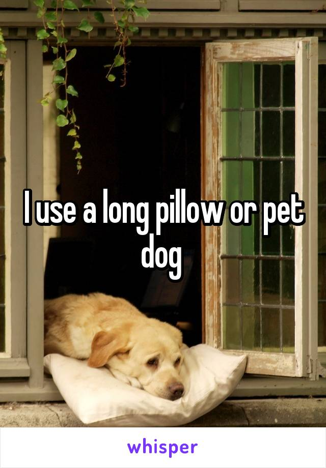 I use a long pillow or pet dog